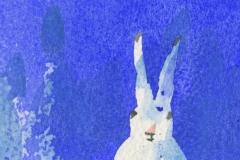 Hare (pakkelapp)