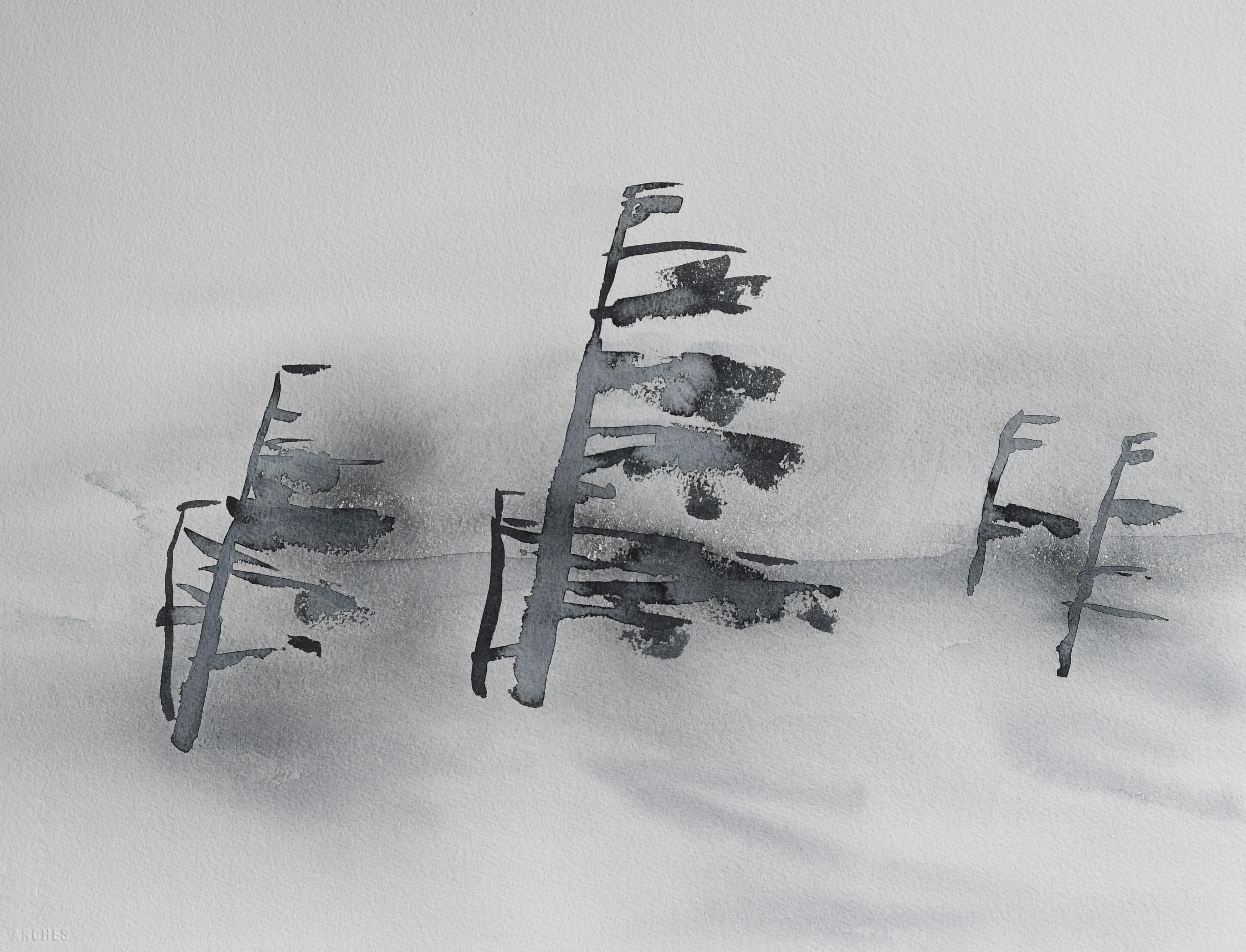 Furu i vind (38 x 53 cm)